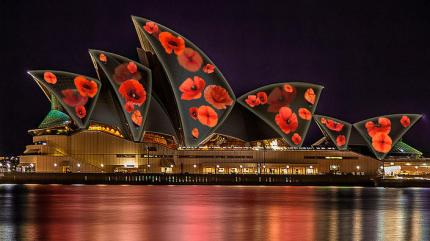 poppies_opera_house